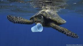 plastics in ocean